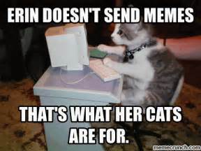Typing Meme - cat