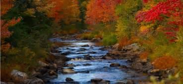 fall colors michigan falling for michigan five ways to enjoy the fall foliage