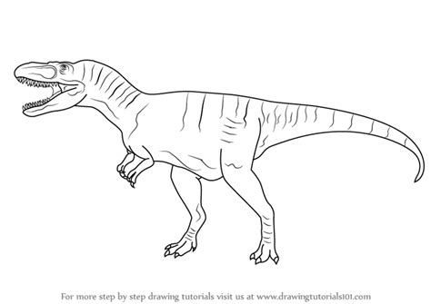 Drawing Dinosaurs by Learn How To Draw An Albertosaurus Dinosaurs Step By