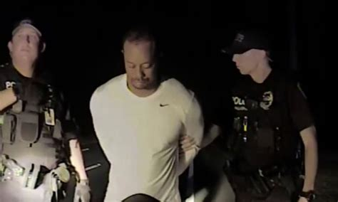 Florida Dui Arrest Records The Of Tiger Woods Dui Arrest Sw Florida Reporter