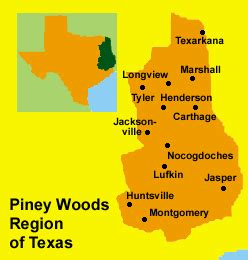 piney woods texas map nacogdoches cities news images websites lookingthis
