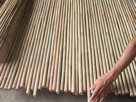 stuoie di canne rosa pietro e figli bambu curiosit 224 e prodotti in bamboo