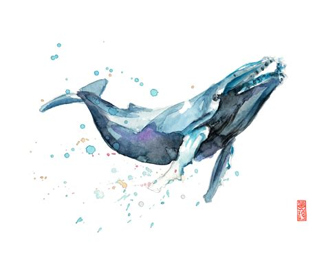 whale watercolor giclee print marine mammal