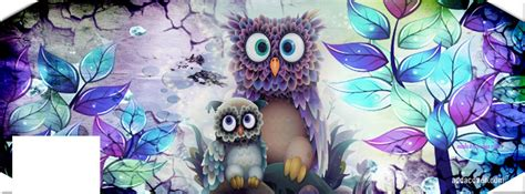 owl lover colorful facebook covers colorful fb covers colorful