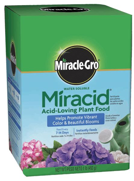 miracle gro water soluble miracid acid loving plant food