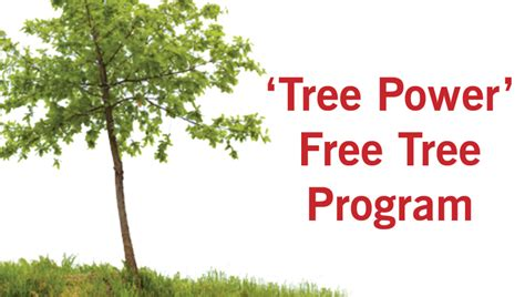 Free Tree Giveaway 2016 - tree power free tree giveaway the garland rowlett messenger