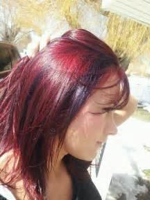 reddish purple hair color purple hair color myideasbedroom
