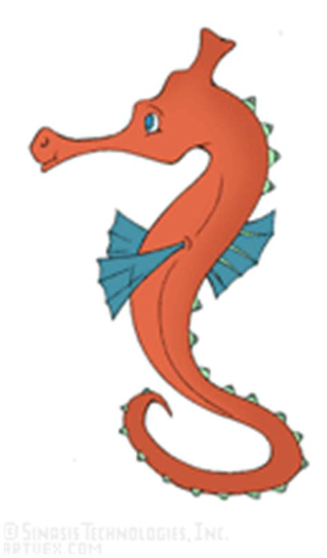 seahorse rubber st seahorses clip