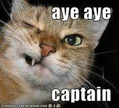 how did the phrase 'aye aye captain' originate? quora