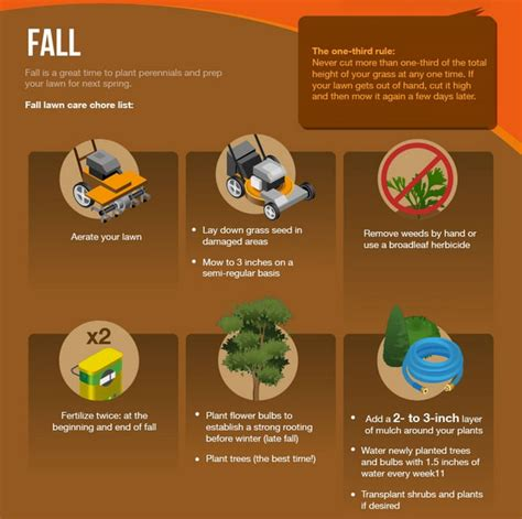 fall landscaping tips fall landscaping tips infographic rels landscaping