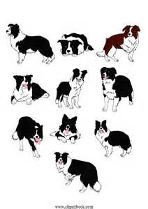 Le realistic border collie dogsfree vector clipart designs for