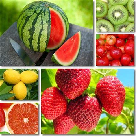 alimenti con vit e vitamina c dove alimenti con vitamina c vitamine proteine