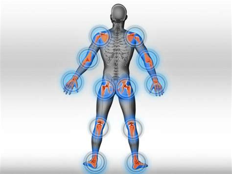 imagenes en 3d que son articulaciones qu 233 son y c 243 mo funcionan enfermedades