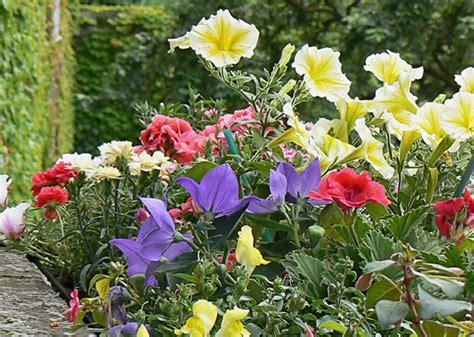fioriere per davanzali lunigiana15 fioriere e davanzali