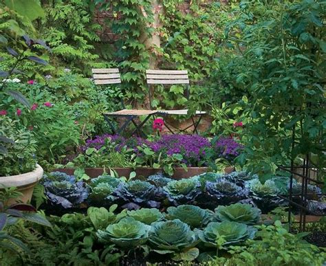 Beautiful Vegetable Garden Gardening Pinterest Beautiful Vegetable Garden Pictures