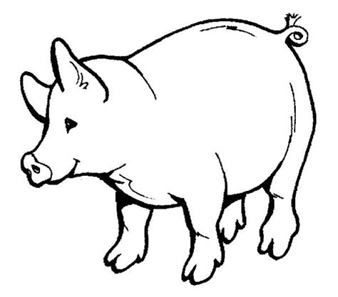 fat pig coloring page fat pig animal coloring books kids coloring pages