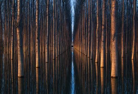 imagenes impresionantes y reales impactantes fotos de paisajes espejados buendiario