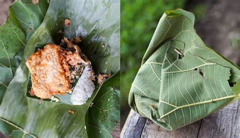 dibungkus daun  kuliner  wangi  makin sedap