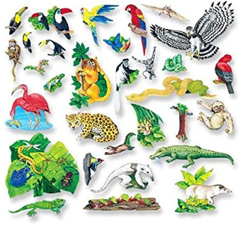printable rainforest animal pictures habitat series rainforest themed printables freebies and