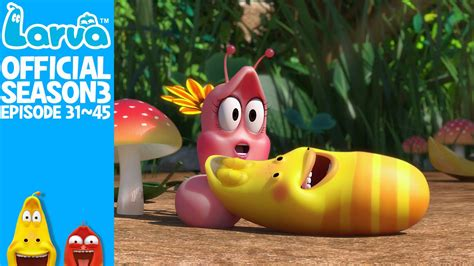 film larva new york official larva in new york season 3 episode 31 45