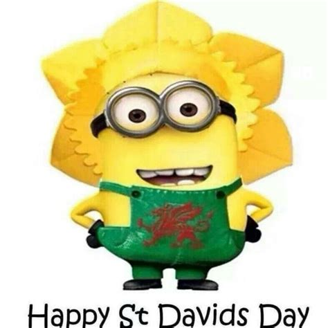 st s day minion pics happy david s day minion picture