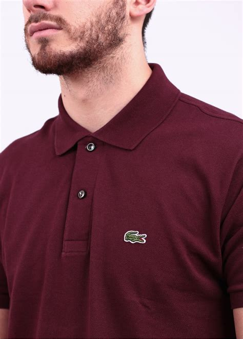 Blouse Polos Tali Maroon Tosca lacoste sleeve logo polo shirt maroon
