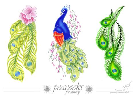 tattoo design peacock feather tattoos and placements on tattoos