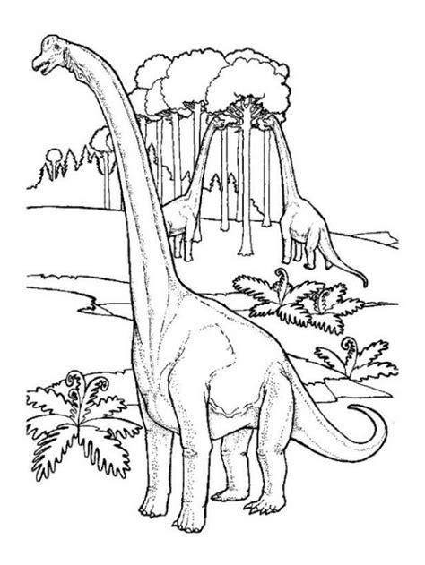 apatosaurus coloring page brontosaurus coloring page coloring home