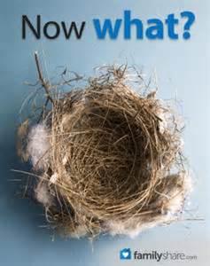 Resultado de imagen de nido vacío