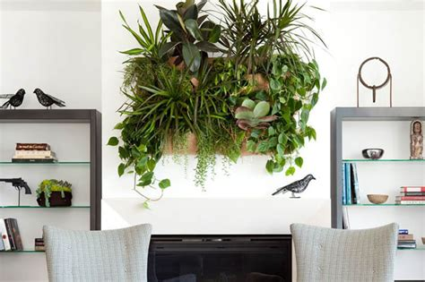 living wall planters wally one indoor outdoor living wall planter woolly pocket