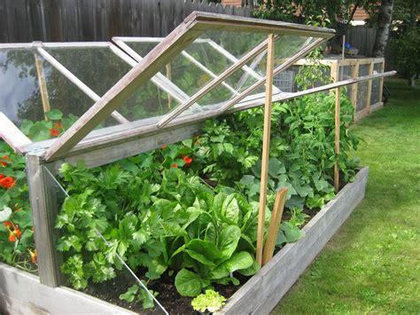 easy diy cold frame plans  extend  growing season