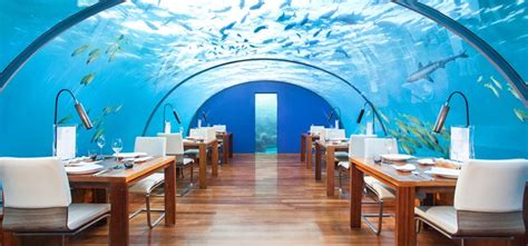 ithaa undersea restaurant prices maldives restaurants and lounges conrad maldives rangali