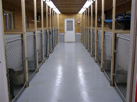 Flooring For Dog Pens by Quot Rational Preparedness Quot The Blog Notes On Building A