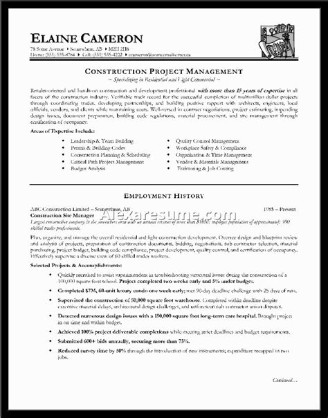 exle of a well written cv exles of resumes for time teachers