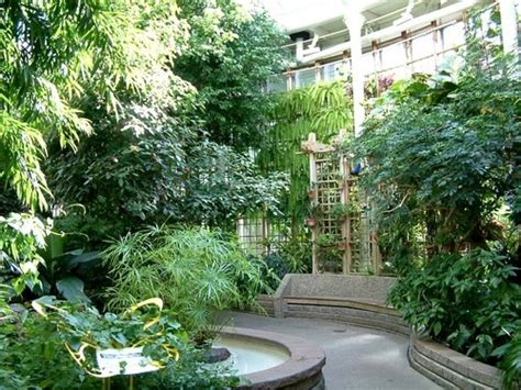 indoor butterfly garden uk 203 best images about current thoughts on