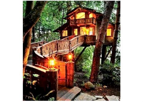 livable tree house plans livable tree house plans 28 images livable tree house plans livable treehouse