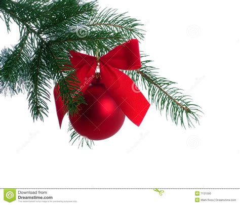 christmas decoration on tree branch stock photo image