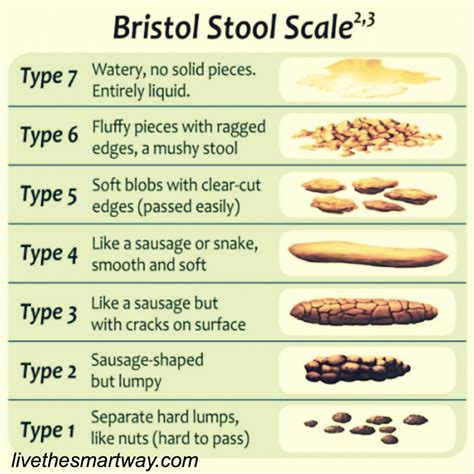 How To Make Your Stool Softer by Digest This The Scoop On Your Brazenwoman