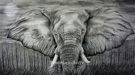 imagenes realistas de animales elefante realista a l 225 piz arte amino amino