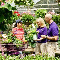 the family tree garden center the family tree garden center 10 avalia 231 245 es viveiros