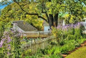photo gratuite jardin fleurs printemps herbe image