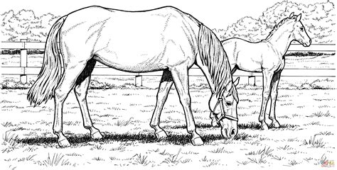 coloring pages of horses and ponies free horse coloring pages for download