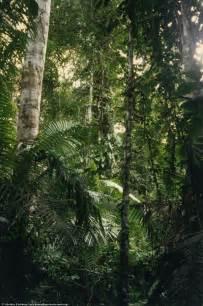 Per 250 amazon jungle machu picchu cuzco