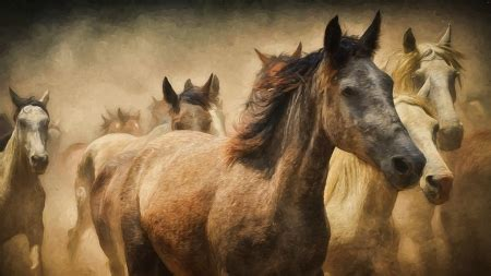 firefox horse themes herd of horses horses animals background wallpapers on