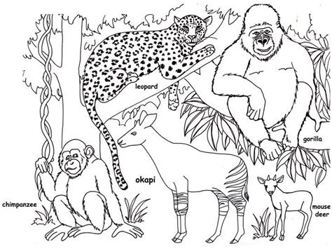 coloring pages of land animals the land of nod august 2014