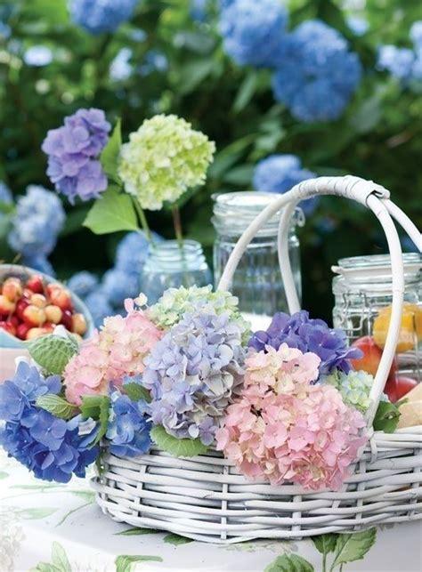 il colore dei fiori d estate fiori d estate l ortensia shabby chic mania by grazia