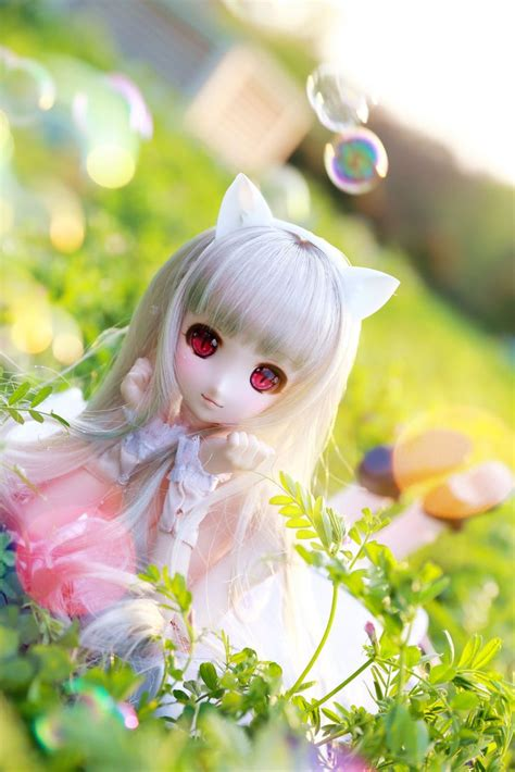jointed doll volks 48 best obitsu volks images on anime dolls