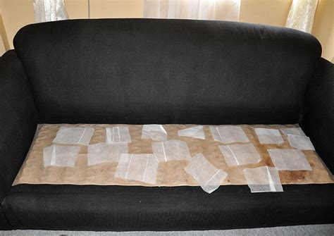 sofa bed bug cover aecagra org