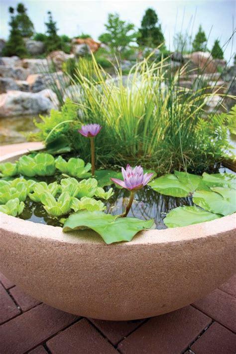 mini water garden ideas 17 best ideas about mini pond on patio pond