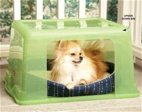 Small Home Pet Dogs 1000 Ideas About Small House On Outdoor